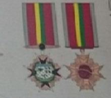 Medalha Mérito da Força Nacional de Segurança.